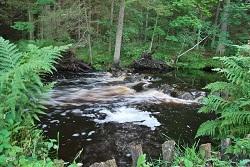 2010-07-16 - La rivière